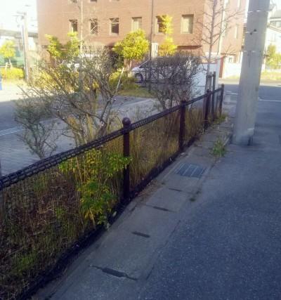 桂の木公園のフェンス4