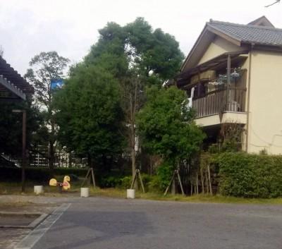 桂の木公園のフェンス3