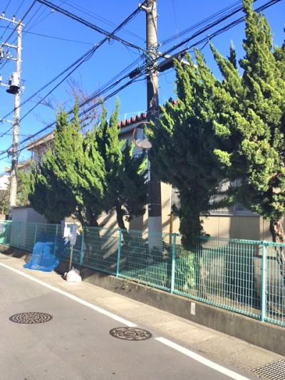 鬼高小学校内の木が繁りカーブミラー1