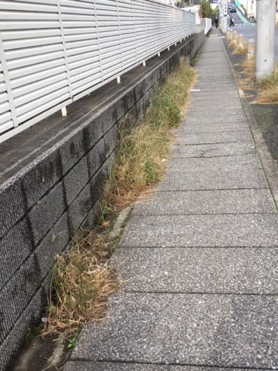 田尻3丁目11地先歩道の草刈り1