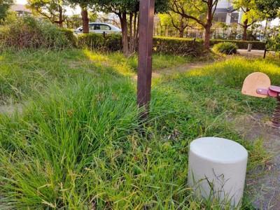 鬼高4丁目桂の木公園5