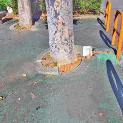 二俣地域の公園整備1